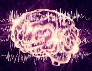 Crises d'épilepsie sans convulsion : un stéthoscope pour écouter le cerveau ?