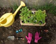 Jardinez en toute sécurité