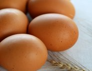 Les œufs n'impactent pas la santé cardiovasculaire