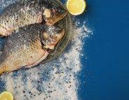 Menus santé : au bon souvenir des poissons d'eau douce