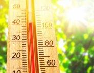 Voyage, chaleur : soyez attentifs à vos médicaments