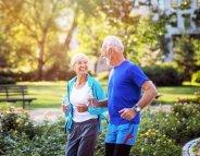 L'apeline, une hormone pour donner une seconde jeunesse aux muscles ?
