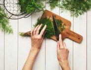 Menu santé : l'aneth, une herbe aux mille vertus