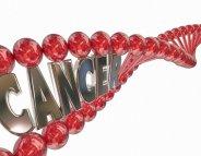 Zoom sur les cancers héréditaires