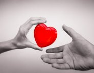 Don d'organes : parlez-en autour de vous