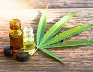 Des extraits de cannabis contre la maladie de Crohn ?