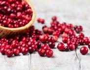 Des cranberries contre l'antibiorésistance