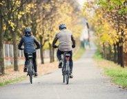 Le vélo électrique, la forme au bout de la route