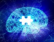 Maladie d'Alzheimer : un dispositif stimule cerveau et intestin