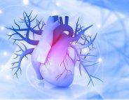 Arrêt cardiaque : refroidir le corps pour limiter les séquelles
