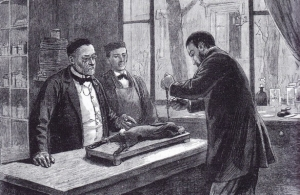 ©M.Pasteur inoculant la rage à un lapin. L'Univers illustré, 16 janvier 1886
