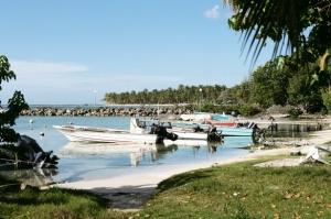 L'épidémie de chikungunya qui sévit aux Antilles prend de l'ampleur ©Phovoir