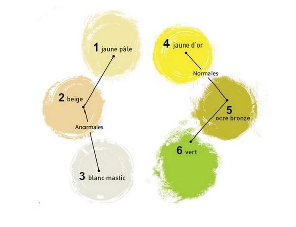 L'échelle de couleur permettant de distinguer les selles normales des selles anormales devrait être intégrée dans le carnet de santé en 2015. ©AMFE