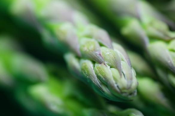 Saviez-vous que certaines asperges se consommaient aussi crues ? ©Phovoir