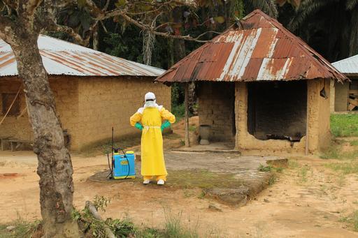 Au mois d'octobre, la Guinée a comptabilisé 453 cas confirmés d'Ebola et 243 décès dus à ce virus. ©Martin Zinggl/MSF
