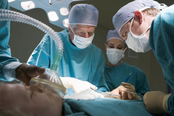 Les cellules souches servent à la régénération de multiples tissus lésés de l'organisme... comme le cœur. ©Phovoir