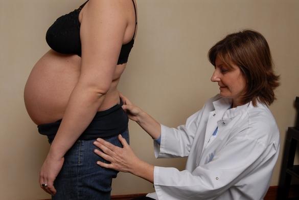 La France compte 700 praticiens chiropracteurs. ©Association française de chiropraxie