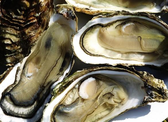 L'huître, l'une des stars des repas de fête. ©Phovoir