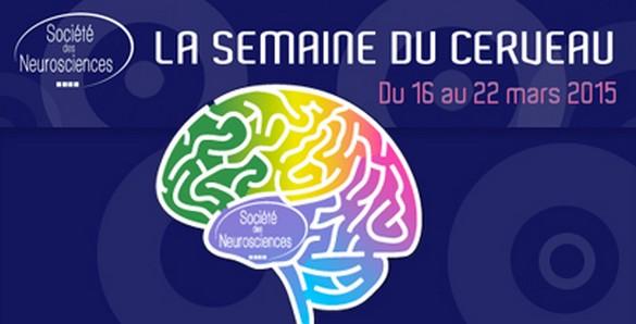 La semaine du cerveau se déroule dans 62 pays du monde ©FRC