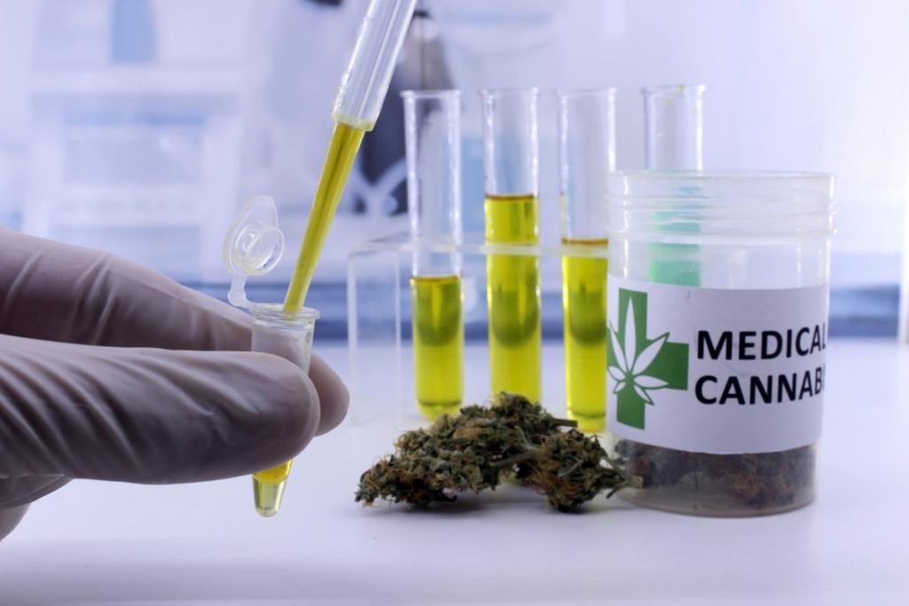 Le cannabis thérapeutique, bientôt autorisé en France ?