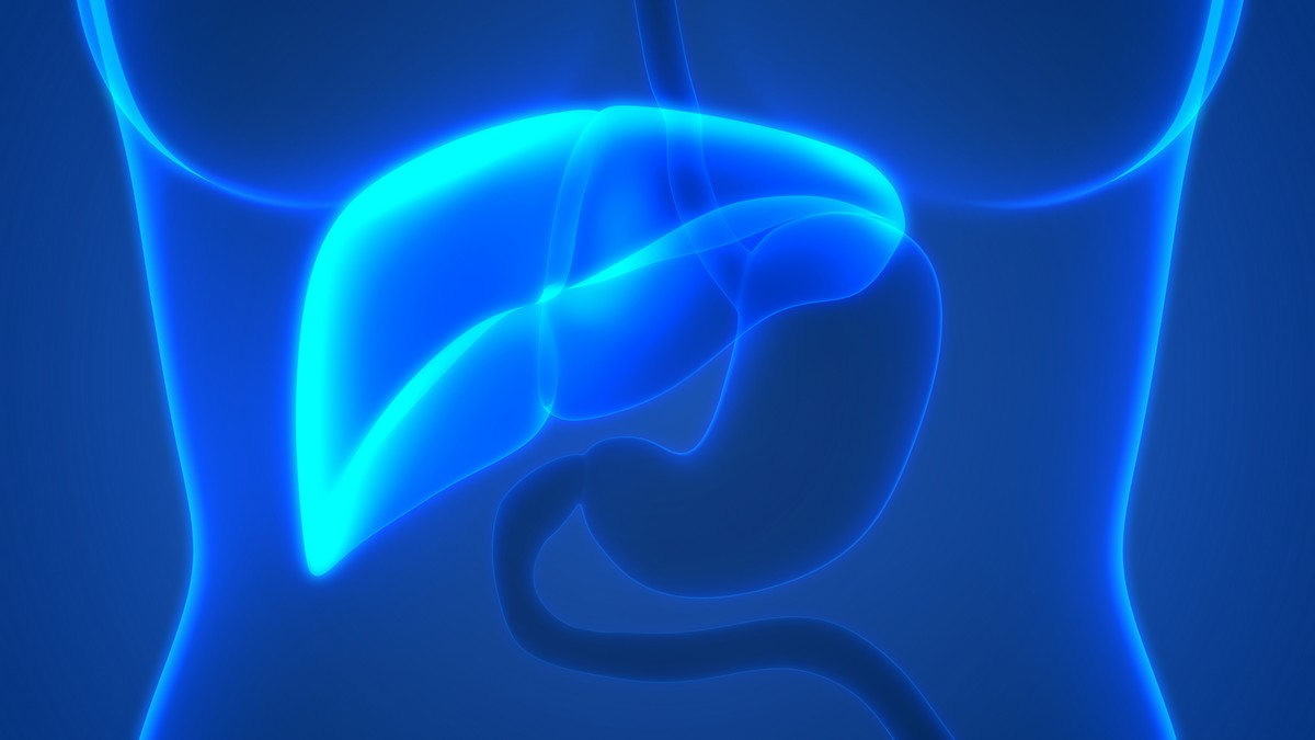 Cancer du foie : à quand l'immunothérapie ? - A la une ...